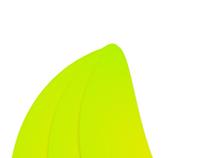 Logo design | The Banana Company
