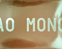 AO Mono / Free Font