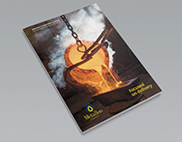 Metallon Corporation Ltd 2014 Annual Report