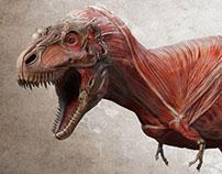 Daspletosaurus making