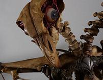 Commisssioned skeleton puppet/prop