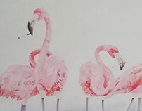 Flamingo Addictions