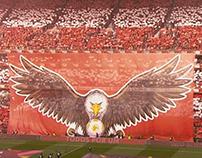 Subscrição Obrigações Benfica SAD 2018-22 | TV Promo