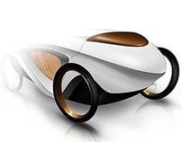 Contemporary Carriage Concept