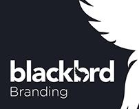 Blackbrd Magazine Branding