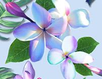 Aloha Florals