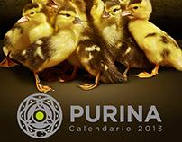 Calendario PURINA 2013
