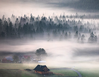 Swimming in the fog. Beskidy. Poland.