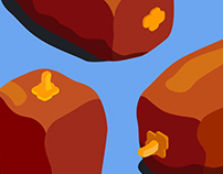 Dates fruit (Kurma) Illustration on product series