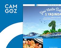 Camgöz Balıkçısı - Responsive Web Design & WordPress