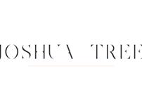 Joshua Tree | A Gorgeous Serif Logo Font
