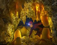 Optimistic Cave