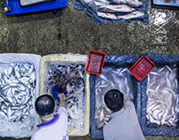 Jurong Fishery Port - The Busy Market