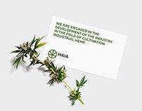 Brand identity for the HAIA