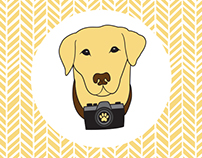 Logo for Yellow Dogtography