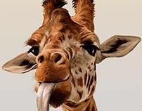 Giraffe says hi
