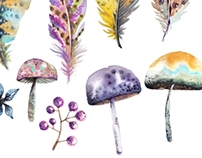 Watercolor feathers and mushrooms