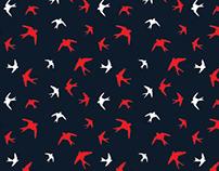 Swallow Birds