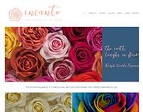 Incanto web page.