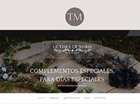 Proyect webSite La Tiara de Maria