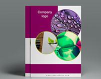 Bi fold/Corporate Brochure