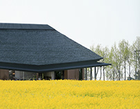 Yellow Fields, Setdesign, CGI