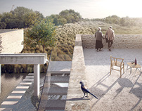Birds Observatory