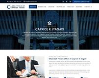 Business Law Website Design