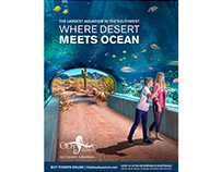 Where Ocean Meets Desert Advertising Campaign