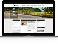 Odinsa website