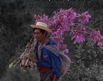 Colloque Mesures et textures du temps chez les Mayas