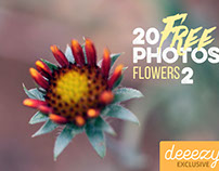 20 FREE Flower Photos 2