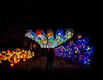 Ohio Chinese Lantern Festival: Columbus