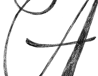 Hand Lettering Sketches