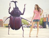 """beetle card (street)"" 24.2×33.3cm, oil on canvas, 2009"