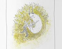 sasanka książka dla dzieci i dorosłych | pasqueflower