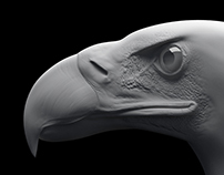 Eagle Sculpting tutorıal