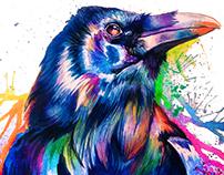 Crow - Commission