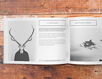Minimalfolio Photography Portfolio A4 Brochure #6