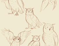 Goose & Owl
