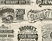 Vintage Graphic Collection
