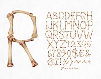 Chicken Bone Font