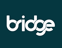 Bridge: Disability and Employment
