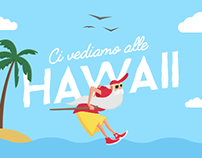 Merlino alle Hawaii - Animated Illustration