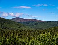 Cairngorms, near Braemar