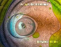 Água de Faxina - Cover Design
