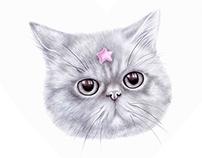 Princess Shooting Star