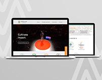 Making Money More Branding & Website Design