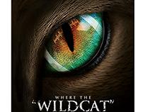 Miccosukee Wildcat Football Campaign