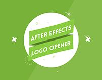 Elegant Logo Reveal V2